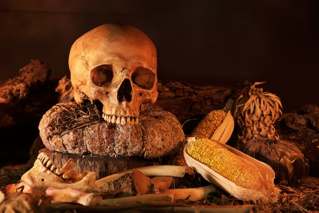 나무 테이블에 두개골과 마른 과일을 가진 정물화