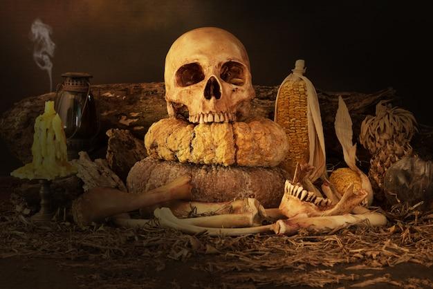 頭蓋骨、ドライフルーツ、乾草の静物