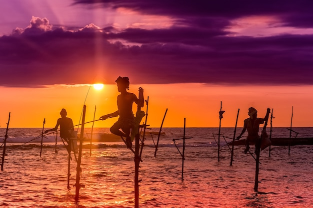스리랑카의 죽마낚시 남해안의 독특한 낚시 스타일