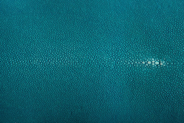 Stingray skin, leather in blue color