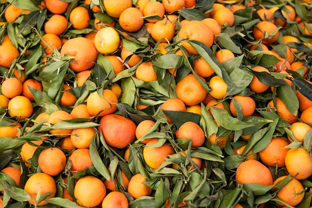 Stock of oranges with leaves