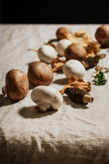 Stock photo of composition of mushrooms and natural ingredients on beig linen rag background.