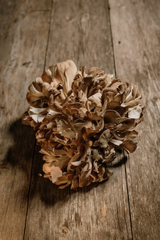 Stock photo of hen of the woods on natural wood background.