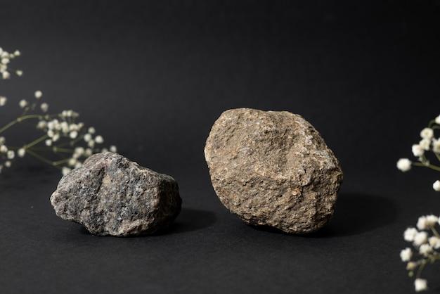 Каменные и засушенные белые цветы на черном фоне. подиум из натуральной природы, натюрморт, эстетика, минимализм, вид сбоку