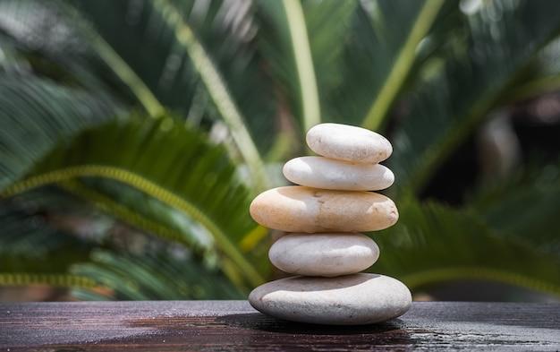 緑の葉と石のバランス自然と禅のシンボルの背景瞑想