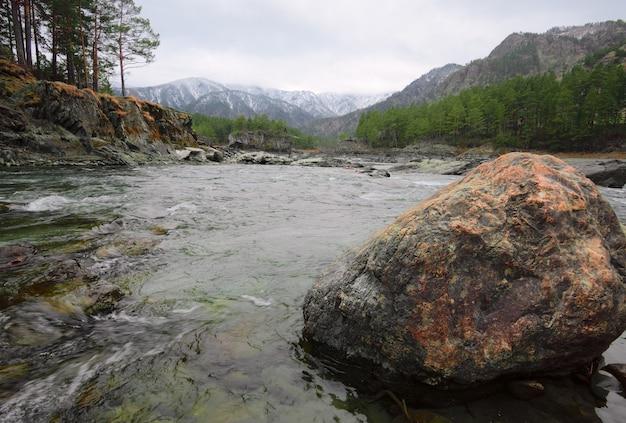 山川の緑の海にある黄金色の石のブロック木々と松の木