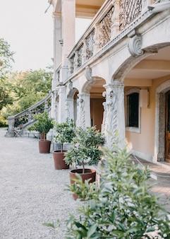 Каменный фасад с колоннами старого белого здания и растения в горшках