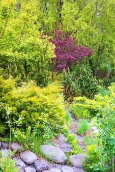 Каменная тропа среди свежих весенних зеленых растений с красочными цветущими.