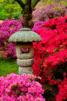 Stone lantern in japanese garden with blooming flowers, park clingendael, the hague, netherlands