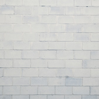 Каменная или кирпичная стена