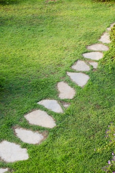 Stone path in garden among green lawn. grass growing up between and around stones.