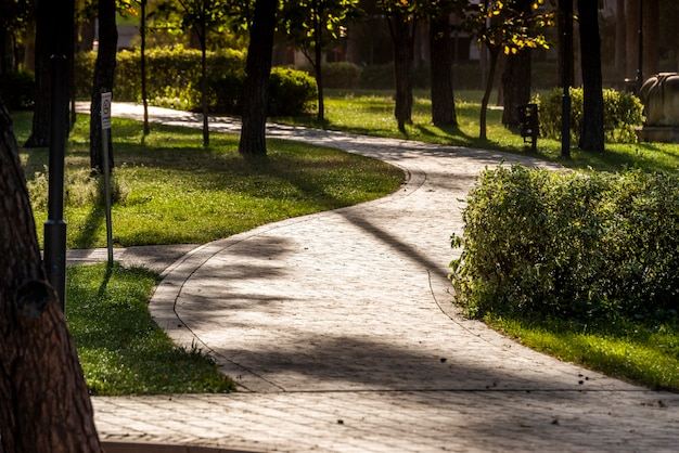 조경 사이를 산책 할 수있는 광장의 돌길