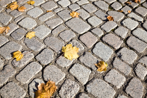 Каменная дорога осенью