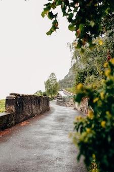 Каменная дорога в виноградниках во франции в живописном виде в сентябре. немного туманно. фото высокого качества
