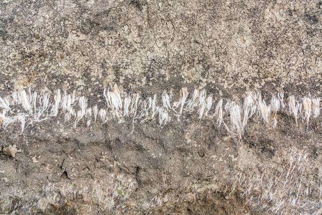 石の岩の表面の背景のテクスチャ