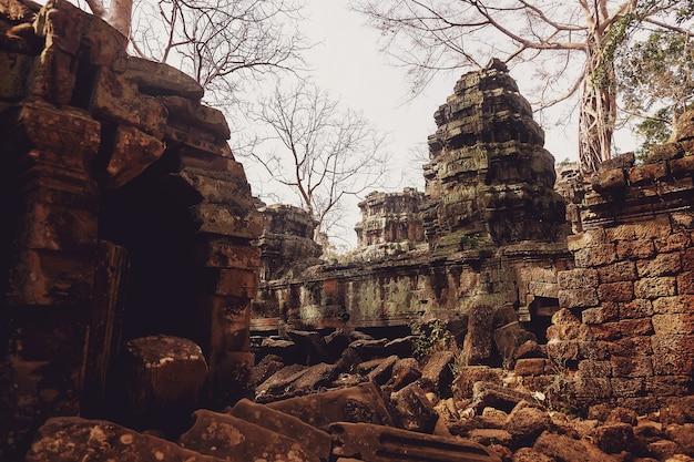 Каменные руины храмового комплекса ангкор-ват - крупнейший религиозный памятник и объект всемирного наследия юнеско.