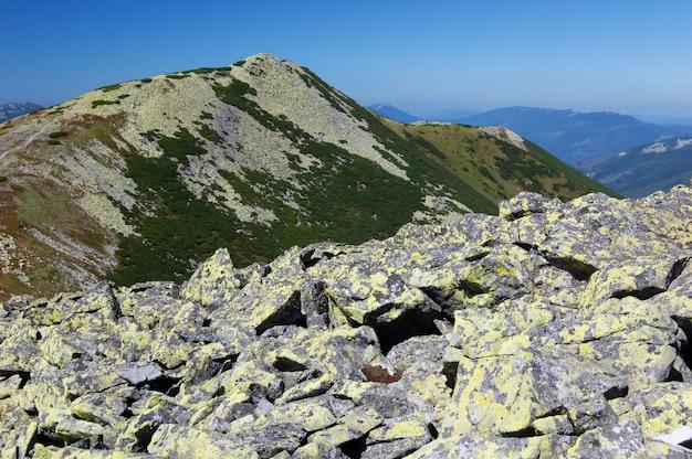 산에 흩어져 있는 돌. 화창한 날씨에 푸른 하늘이 있는 여름 풍경. 산 정상에서 볼 수 있습니다. carpathians, 우크라이나, 유럽