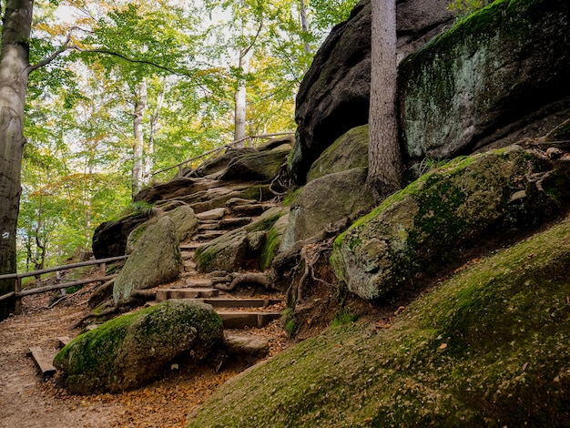 Каменная лестница в тропинке в нижней силезии, польша. осенняя пора
