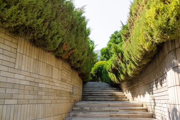Каменная лестница в зеленом саду. ухоженная территория