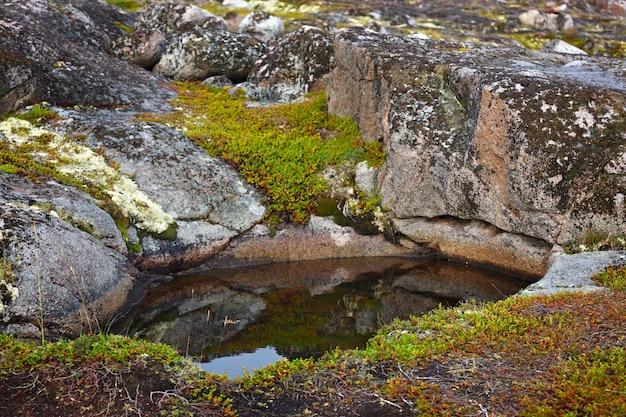 背景の石の表面