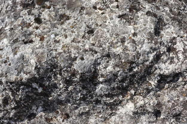 Поверхность камня серая неровность и мох