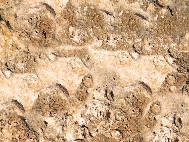 Камень текстуры фона