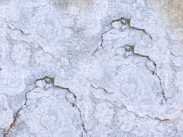 庭の石のテクスチャ