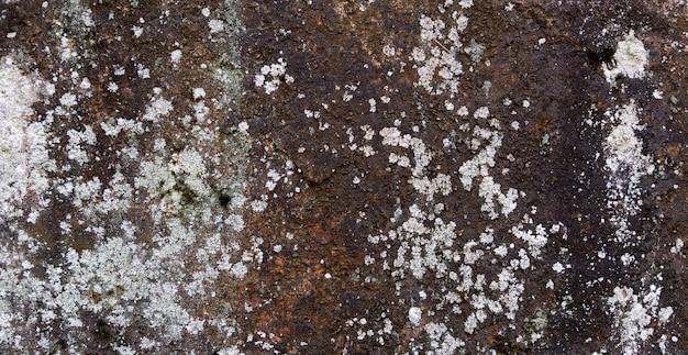 Каменная структура с ржавчиной и лишайником. органический фон.