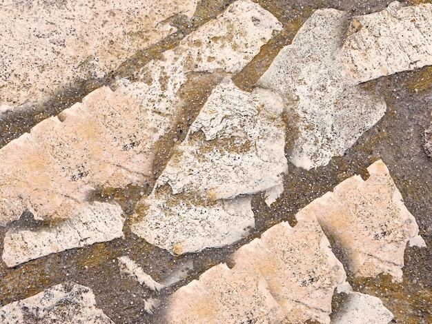 Trama di pietra
