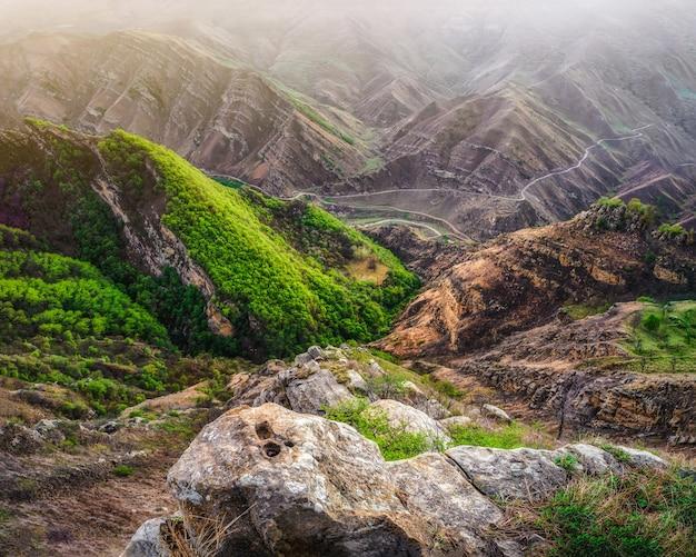 トカゲの頭のように見える石。織り目加工の山々がある高地の緑の高原。山の谷。遠くに伸びる岩だらけの棚。