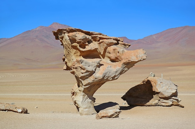 Stone tree or arbol de piedra, famous rock formation at eduardo avaroa andean fauna national reserve, bolivia