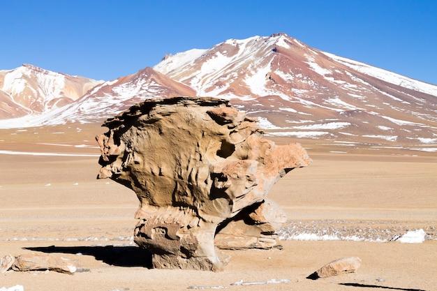 ボリビアのストーンツリーロック。ボリビアのランドマーク。アルボル・デ・ピエドラ