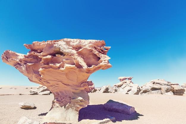 남미 uyuni 소금 평지의 볼리비아에서 돌 나무 암석