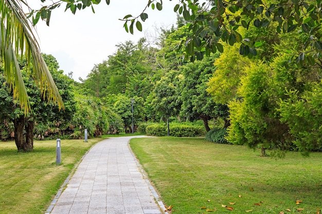 Stone walkway in the park in cloudy weather, shenzhen, china, asia