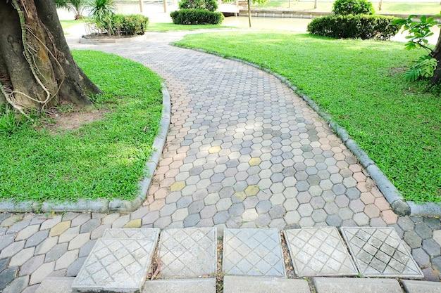 Каменный проход с зеленой травой и деревом в саду в общественном парке.