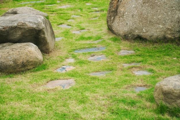 Каменная дорожка с зеленой травой (газон) и большой камень в саду