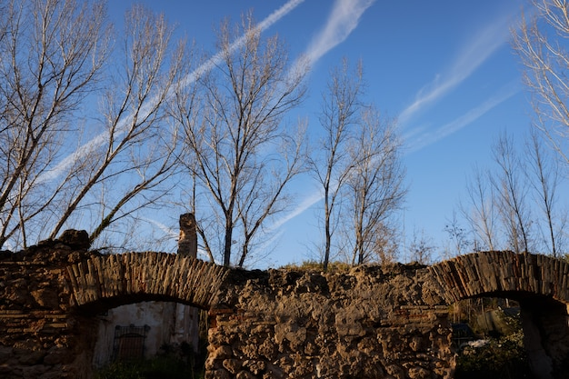 Каменная стена с древней аркой в заброшенном здании в лесу на закате.