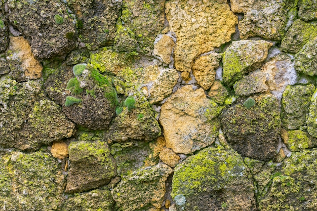 Stone wall with moss close up