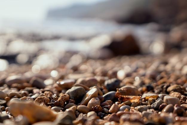 해변에서 돌과 조개. 화창한 여름날