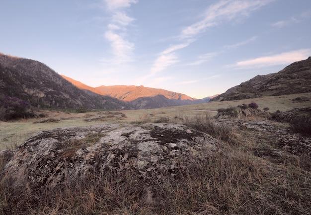 Камни, покрытые разноцветным мхом и лишайниковой травой в горной долине