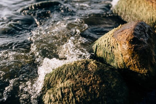 Камни на озере в тумане. большие и маленькие камни. вода прозрачная, под водой можно увидеть заросшие илом камни. скопируйте пространство.