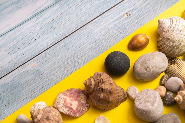 Stones and shells on a blue wooden background and a yellow background.marine theme