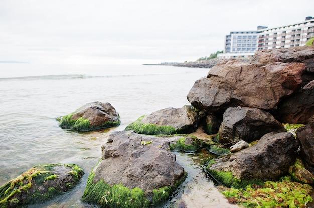 ブルガリア、ネセバルの海沿いの藻類の石。