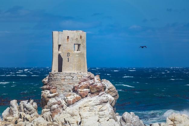 Каменистая точка скалистое побережье в бетти бэй, южная африка