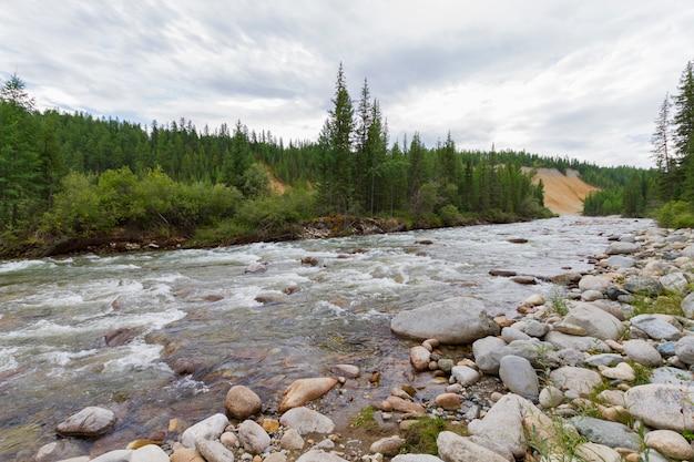 Stony river bank.
