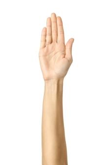 멈춰! 여자 손 몸짓에 고립 된 화이트
