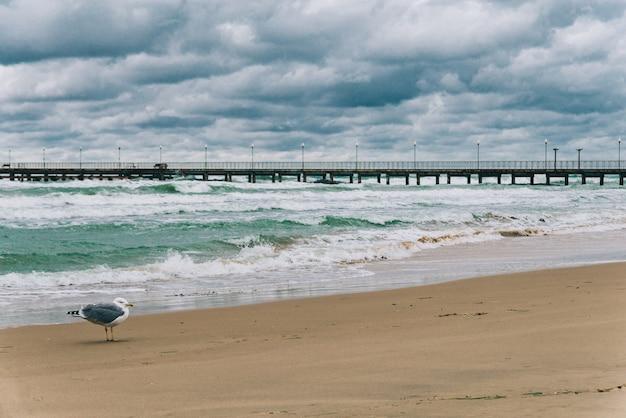 日中の嵐の黒海