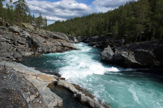 A stormy river stream with noise flows through the rocks and forest in norway, clear transparent blue water.