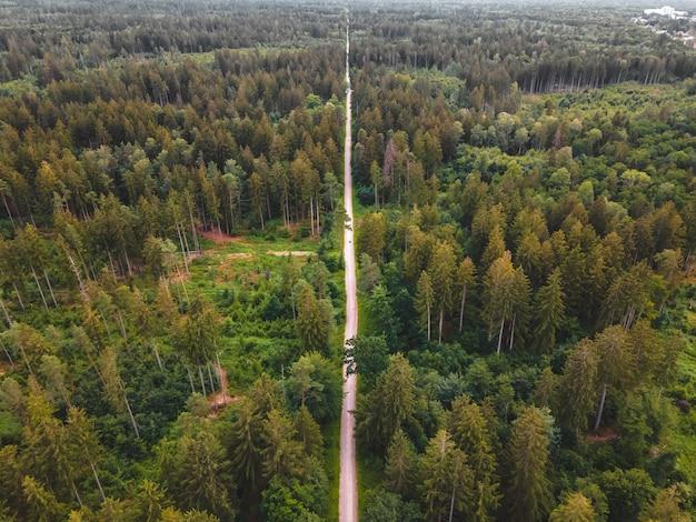 Un sentiero dritto attraverso la foresta.