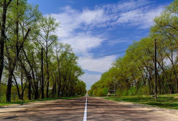 숲에서 똑바로 긴 아스팔트 도로. 체르노빌 제외 구역.